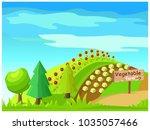 vegetable farm concept. idyllic ...   Shutterstock .eps vector #1035057466