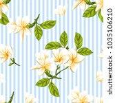 seamless pattern  background... | Shutterstock .eps vector #1035106210