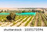 a desert farm situated among...   Shutterstock . vector #1035173596