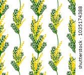 vector illustration.  mimosa... | Shutterstock .eps vector #1035174388