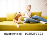 Stock photo cat and dog frienshop 1035293323