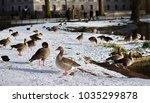 london snow park | Shutterstock . vector #1035299878