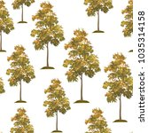 seamless pattern  acacia tree... | Shutterstock . vector #1035314158