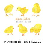 hand painted yellow chickens... | Shutterstock . vector #1035421120