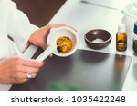 homeopathy lab. homeopath...   Shutterstock . vector #1035422248