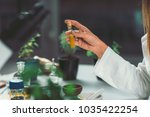 homeopathy lab. homeopath... | Shutterstock . vector #1035422254