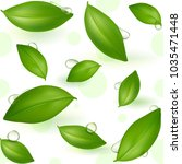 green young tea leaves on a... | Shutterstock .eps vector #1035471448