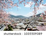 rooftop and cherry blossom... | Shutterstock . vector #1035509389