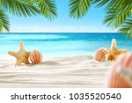 shell on beach and summer time  | Shutterstock . vector #1035520540