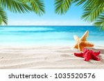 shell on beach and summer time    Shutterstock . vector #1035520576