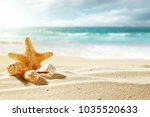 shell on beach and summer time  | Shutterstock . vector #1035520633