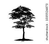 tree silhouettes on white... | Shutterstock .eps vector #1035526873