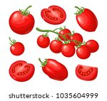 set of hand drawn tomatoes... | Shutterstock .eps vector #1035604999