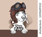 dachshund in a pilot helmet and ... | Shutterstock .eps vector #1035609310