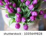 Purple Tulips Lila Tulips...