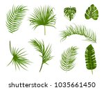 tropical palm leaves  jungle... | Shutterstock .eps vector #1035661450