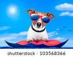 dog on an air mattress | Shutterstock . vector #103568366