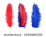 colored feathers. carnival. | Shutterstock . vector #1035684100