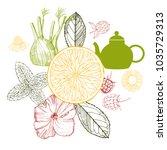 herbal tea. vector sketch ...   Shutterstock .eps vector #1035729313