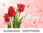 vector beautiful template with... | Shutterstock .eps vector #1035743650