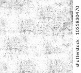 grunge black and white....   Shutterstock . vector #1035830470