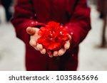 child is holding a red... | Shutterstock . vector #1035865696