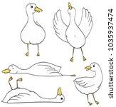 simple funny ducks  vector   Shutterstock .eps vector #1035937474