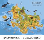 isometric 3d european flora and ... | Shutterstock .eps vector #1036004050