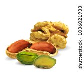 fresh walnut  nutritious... | Shutterstock .eps vector #1036021933