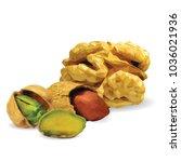 fresh walnut  nutritious... | Shutterstock .eps vector #1036021936