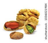 fresh walnut  nutritious... | Shutterstock .eps vector #1036021984