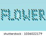 top view of word flower made... | Shutterstock . vector #1036022179