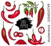 hand drawn vegetable set of...   Shutterstock .eps vector #1036035799