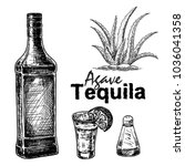 set black and white of tequila... | Shutterstock .eps vector #1036041358