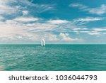 beautiful seascape. azure wavy... | Shutterstock . vector #1036044793