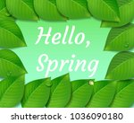 spring background with green... | Shutterstock .eps vector #1036090180