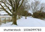 Beverley  Yorkshire  Uk. Snow...
