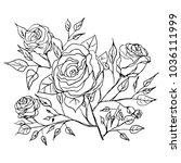 graphic flower art illustration.... | Shutterstock .eps vector #1036111999