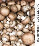 champignon royal mushrooms.... | Shutterstock . vector #1036127740