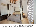 interior design decor... | Shutterstock . vector #1036160686
