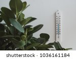 white thermomoter on the wall... | Shutterstock . vector #1036161184