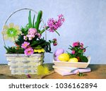 colorful eggs and spring flowers   Shutterstock . vector #1036162894