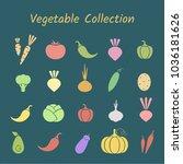 flat design isolated vegetable...   Shutterstock .eps vector #1036181626