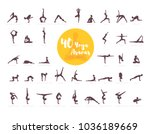 vector illustration of 40 yoga... | Shutterstock .eps vector #1036189669