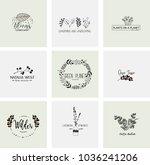 flower logo templates...   Shutterstock .eps vector #1036241206