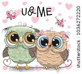 two cute cartoon owls and... | Shutterstock .eps vector #1036272220