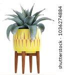 3d illustration agave   Shutterstock . vector #1036274884