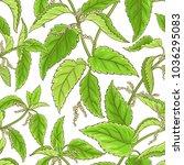 nettle vector pattern | Shutterstock .eps vector #1036295083