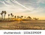 venice beach at sunset | Shutterstock . vector #1036339009