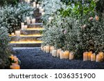 wedding decor  decorated stairs ... | Shutterstock . vector #1036351900
